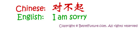 "Mandarin Chinese for ""I am Sorry"""