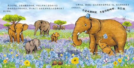 Forget-Me-Not Series in Chinese (3 Books)